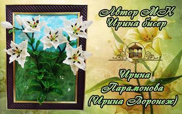 http://sh.uploads.ru/t/X2owj.jpg