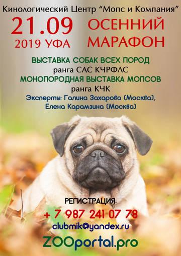 http://sh.uploads.ru/t/Y1Gs0.jpg