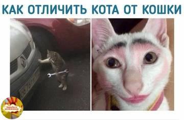 http://sh.uploads.ru/t/Z3c1h.jpg