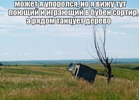 http://sh.uploads.ru/t/ZIsFi.jpg