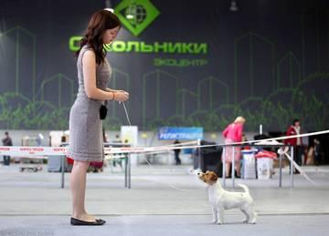 http://sh.uploads.ru/t/cRUeb.jpg