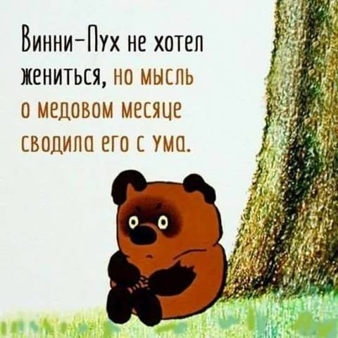 http://sh.uploads.ru/t/fSIL0.jpg