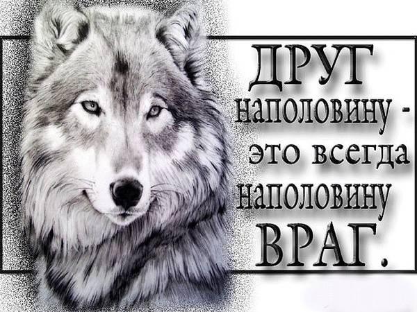 http://sh.uploads.ru/t/g0ZEJ.jpg
