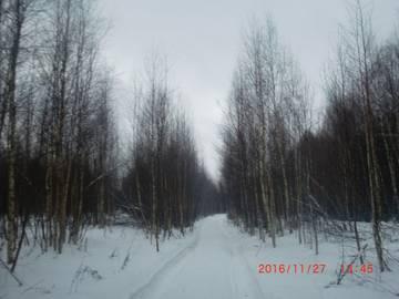 Узкоколейка на космодемьянск 19 и 27 ноября 2016