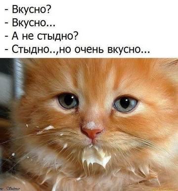 http://sh.uploads.ru/t/iKD5R.jpg
