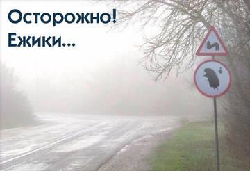 http://sh.uploads.ru/t/jV2hx.jpg