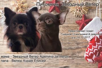 http://sh.uploads.ru/t/ja6BO.jpg