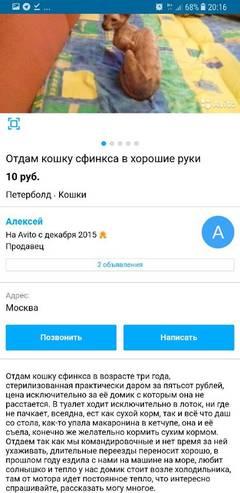 http://sh.uploads.ru/t/knoC8.jpg