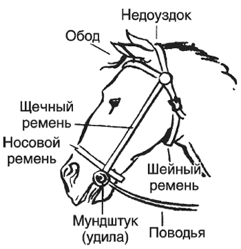 http://sh.uploads.ru/t/l3wpR.png