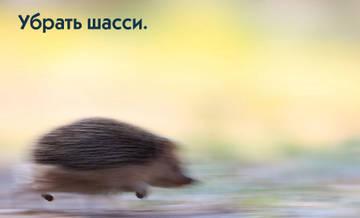 http://sh.uploads.ru/t/nmOlN.jpg