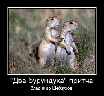 http://sh.uploads.ru/t/oTw5t.jpg