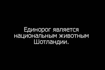 http://sh.uploads.ru/t/pZV2y.jpg