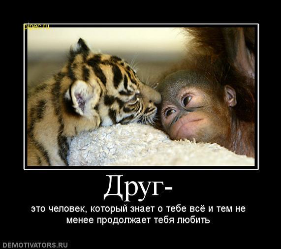 http://sh.uploads.ru/t/t0bRz.jpg