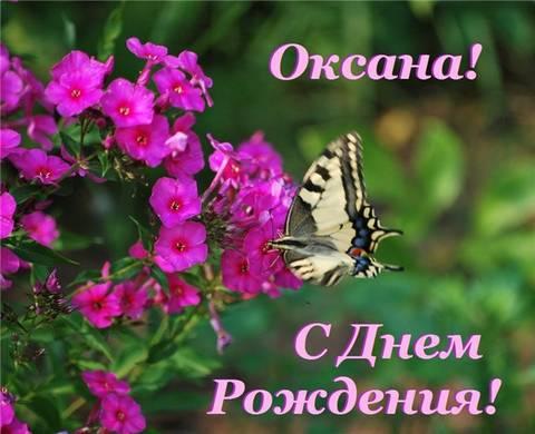 http://sh.uploads.ru/t/tylMG.jpg