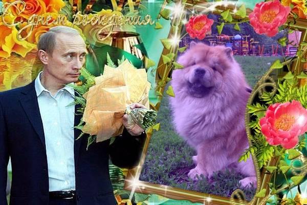 http://sh.uploads.ru/t/ycSPF.jpg