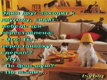 http://sh.uploads.ru/t/zyBk9.jpg