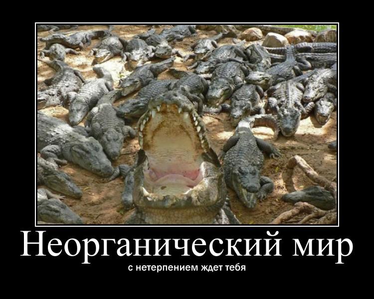 http://sh.uploads.ru/wrDJ1.jpg