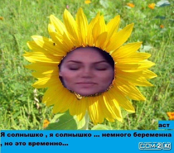 http://sh.uploads.ru/yYF0x.jpg